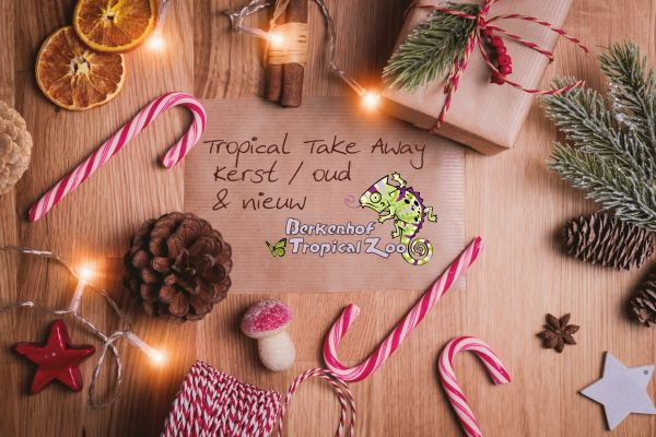 Tropical Take Away 'Kerst / oud & nieuw 2020'